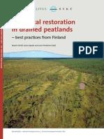 Peatland Hydrology