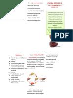 Pliant ciroza hepatica