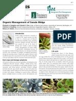 Swede Midge Organic Management
