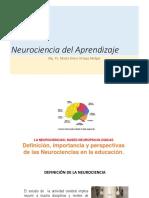 Neurociencia-primaria.pptx