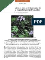 Plantas Medicinales Para El Tratamiento de Afecciones Respiratorias