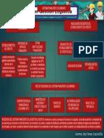 MAPA CONCEPTUAL SISTEMA FINANCIERO DE COLOMBIA.pptx