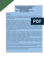Agenda de Trabajo 5 Dhe Iic2019 (2)