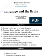 Report - Language and the Brain