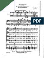 Widerspruch - Schubert