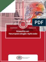 131 Programa Neuro