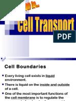 celltransport-pptn-