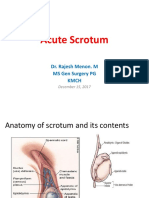 Acute Scrotum, Differential diagnosis