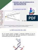 MOLECULAR TODO 1-2.pdf