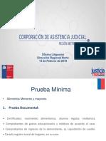 PPT Litigación (4)