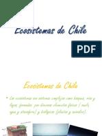 34090921 Ecosistemas de Chile