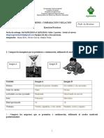 COMPARACIÓN Y RELACIÓN (1) (1).doc