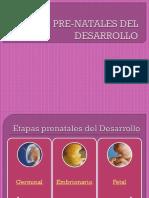 DESARROLLO EMBRIONARIO 2003