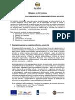 TdR Asesor Académico 23jul19