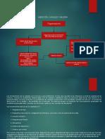 Analisis de La Medicion y Mejora