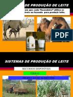 2. Conceituando Sistemas de Produção de Leite 2013 2