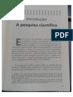 O professor pesquisador - capítulo de introdução