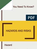 Grade 7 Hazards and Risks