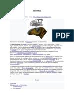 FOSILDIAGENES.docx