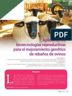 aplicación de biotecnologías reproductivas para el mejoramiento genético de rebaños de ovinos