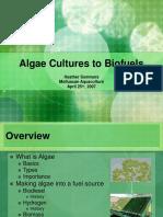 Algae Cultures to Biofuels (1)