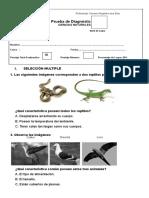 DIAGNOSTICO CIENCIAS NATURALES n° 2 de 2basico