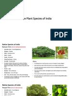 Native Species of India