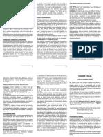 Anexo 3.2 - Resumen Monografía