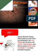 DBD Mini Pro.pptx
