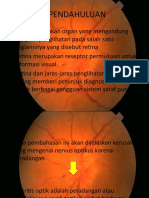 Optic Neuritis Ppt