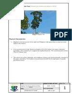 Bagtikan Tree Properties