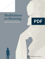 Meditations on Meaning
