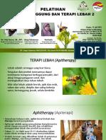 Slide Terapi Lebah Vita Sarasi 2019