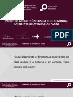 PROJETOS ARQUITETÔNICOS DA REDE CEGONHA_AMBIENTES DE ATENÇÃO AO PARTO.pdf