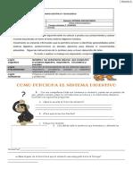 guia-1-sistema-digestivo1.pdf