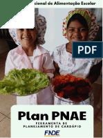 Manual Plan PNAE