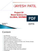Global Warming Project Ppt Presentation