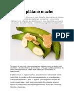 El Plátano Macho
