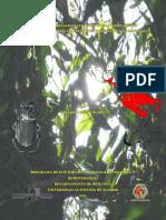 BIOGEOGRAFÍA REALCIONES FILOGENETICAS Y ADAPTACIONES AMBIENTALES DE LA TRIBU EURYSTINI