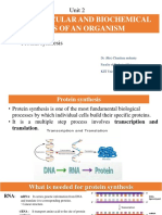 Protein Synthesis - Copy-1.pptx