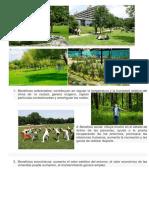 Beneficios ambientales.docx