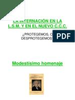Internacion en el CCyC