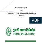 Consumer Credit Scheme of Pubali Bank Limited