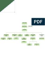 Modelo organigrama