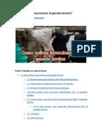 Cómo aplicar inyecciones al ganado bovino.pdf