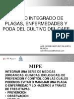 MANEJO INTEGRADO DE PLAGAS Y ENFERMEDADES DEL CULTIVO DEL CAFE.pptx