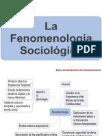 Fenomenología sociológica