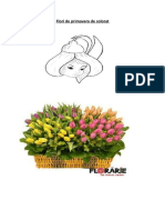 Flori de Primavara de Colorat