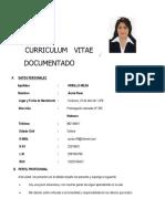 Curriculum Vitae 2019 Inei