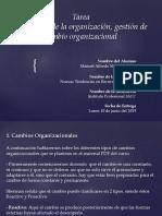 manuel mallea gómez tarea semana 8 comportamiento organizacional.pptx